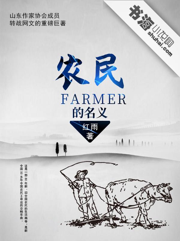 农民的名义